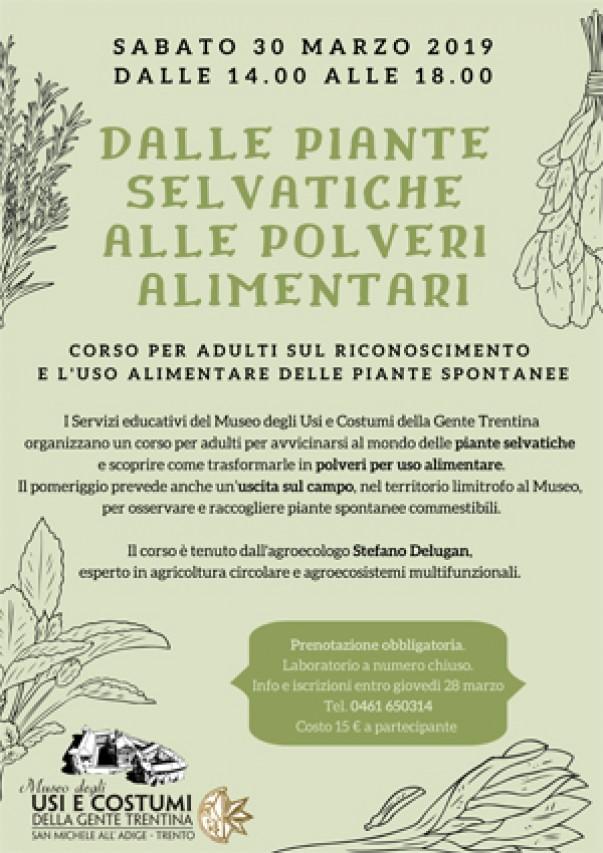 Corso per adulti: dalle piante selvatiche alle polveri alimentari
