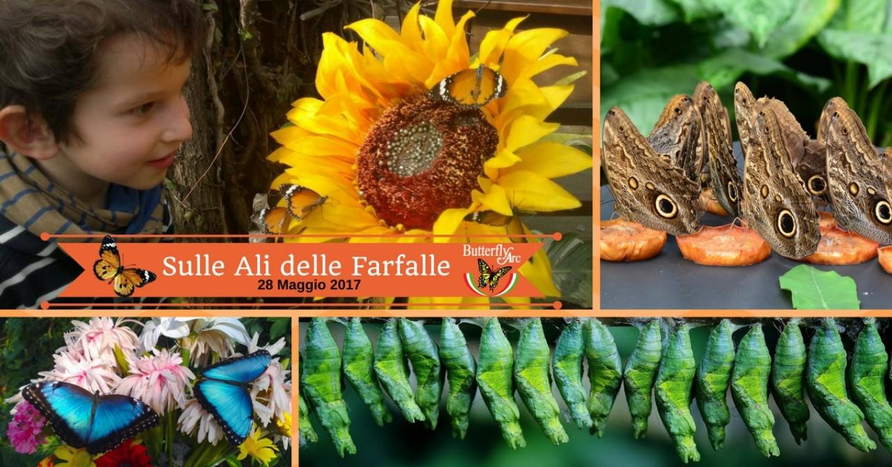"""Sulle Ali delle Farfalle"" alla Butterfly Arc"