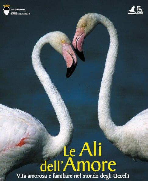 Le Ali dell'Amore