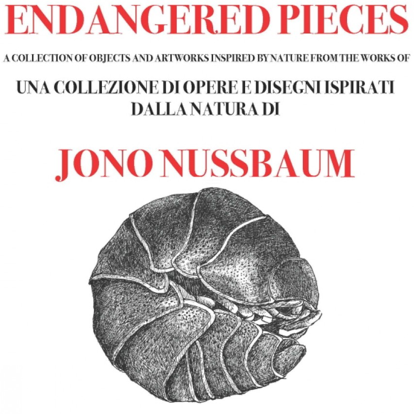 Endangered Pieces di Jono Nussbaum