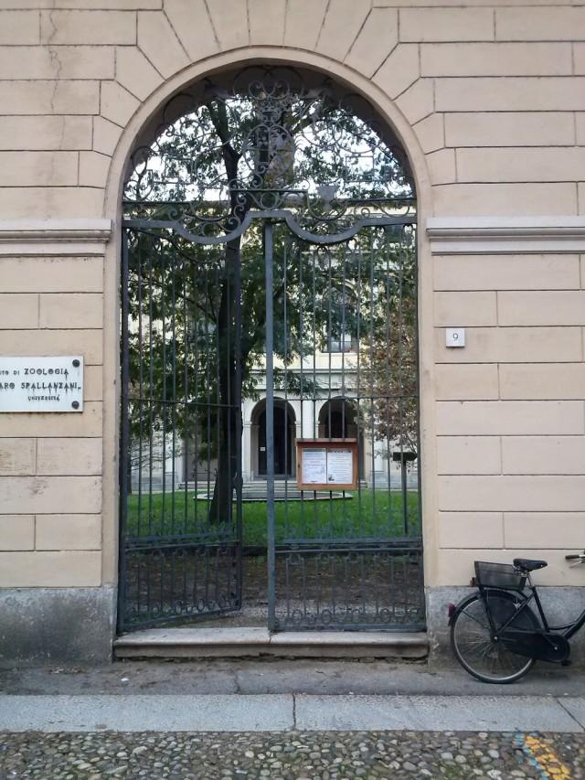 Il Museo di Storia Naturale chiude definitivamente per lavori