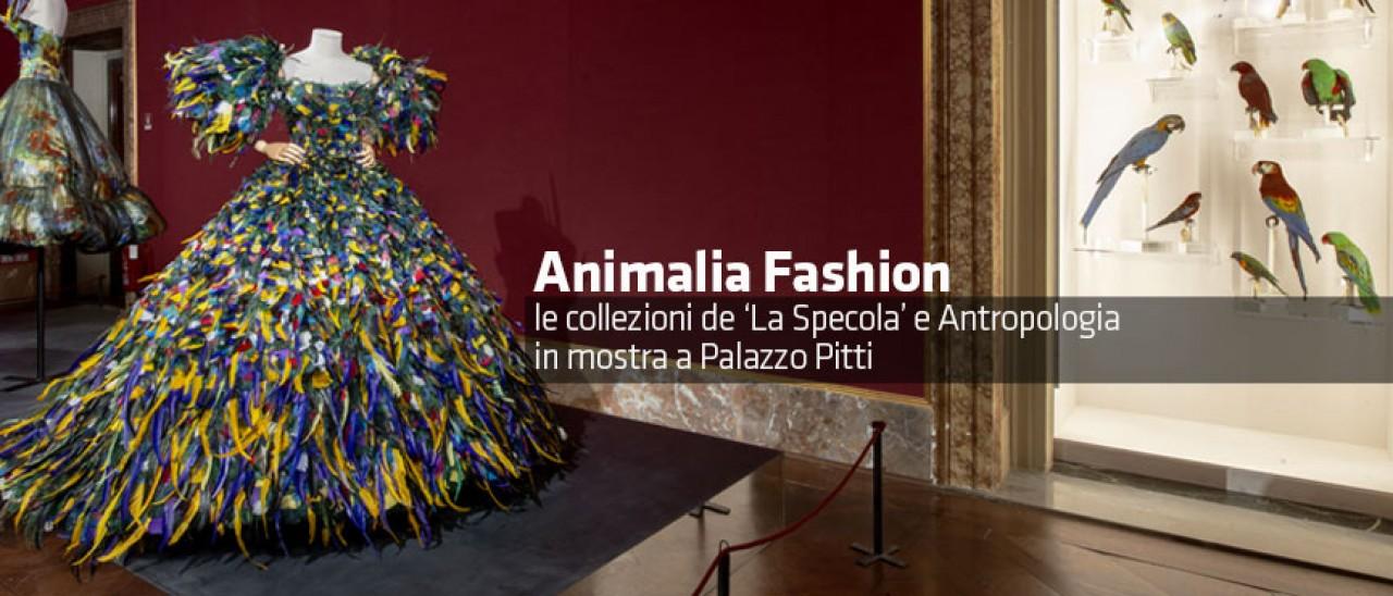 Le meraviglie del mondo animale incontrano l'alta moda