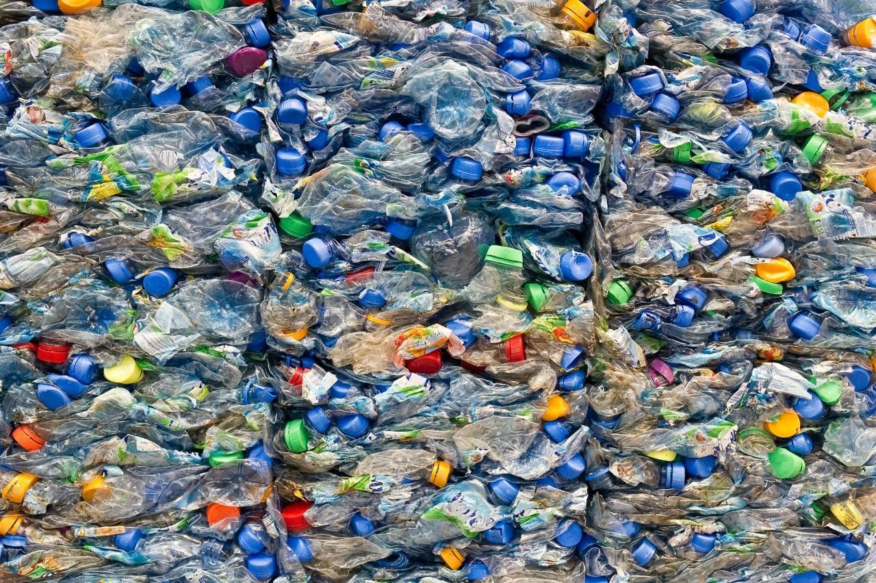 No plastic Day