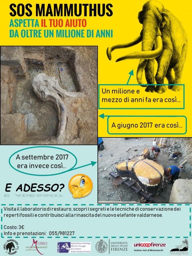 Visite guidate di marzo al Museo Paleontologico di Montevarchi