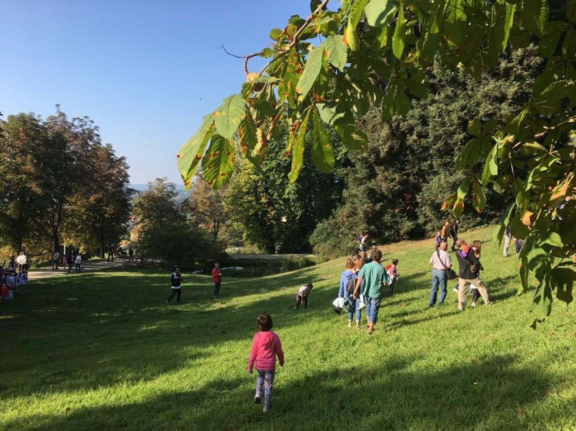 Visite guidate alle fioriture del Parco Burcina e Mostra documentaria