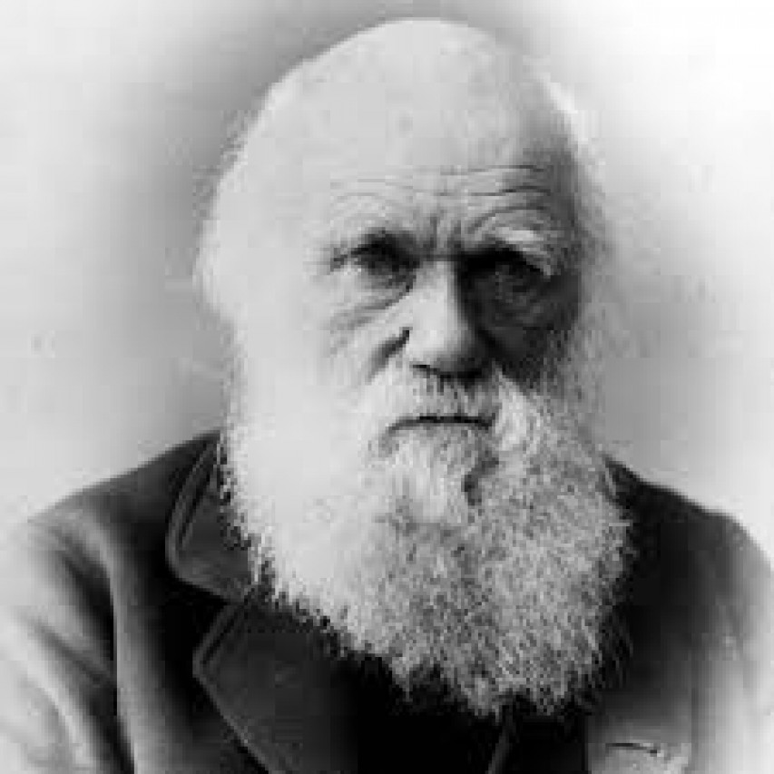 Darwin Day al Museo Doria!