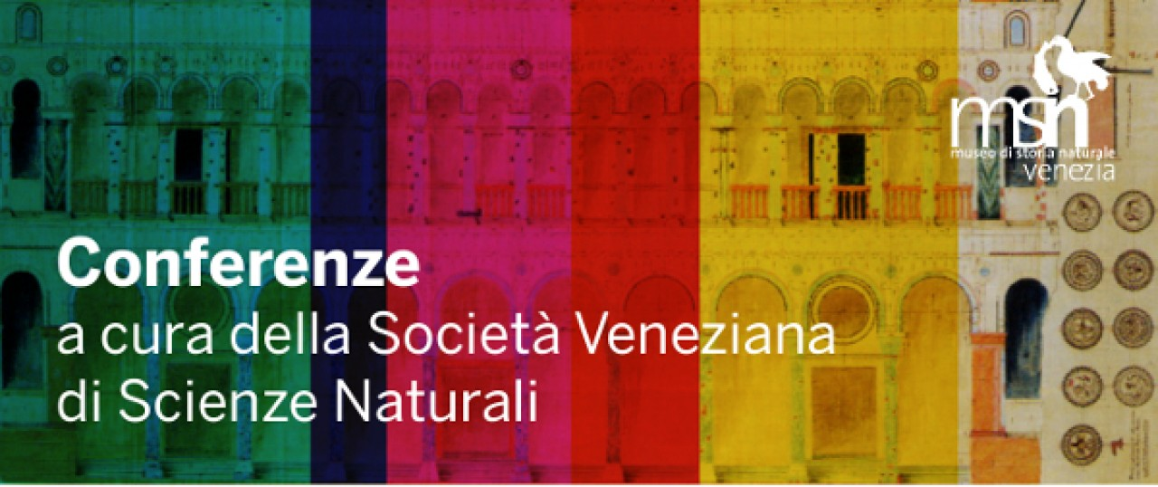 CONFERENZE - autunno 2020