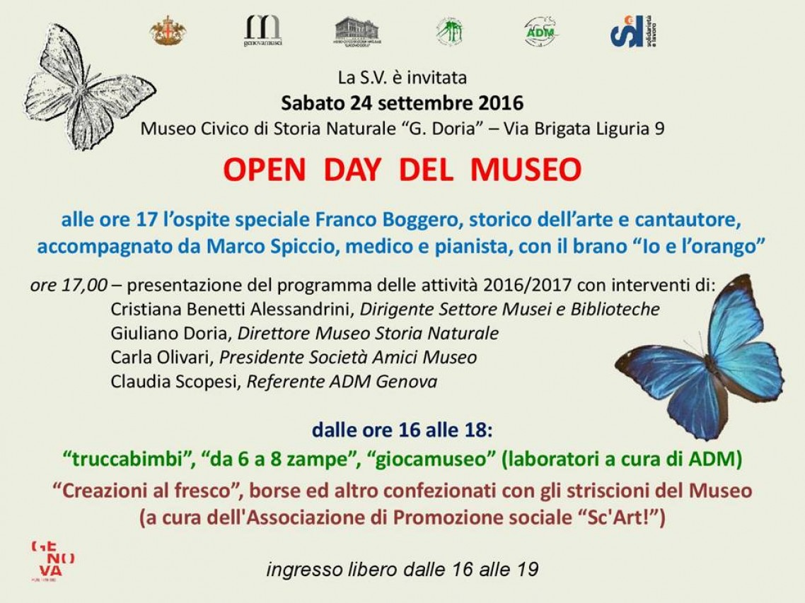 OPEN DAY DEL MUSEO