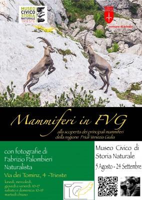 Mammiferi in Friuli Venezia Giulia