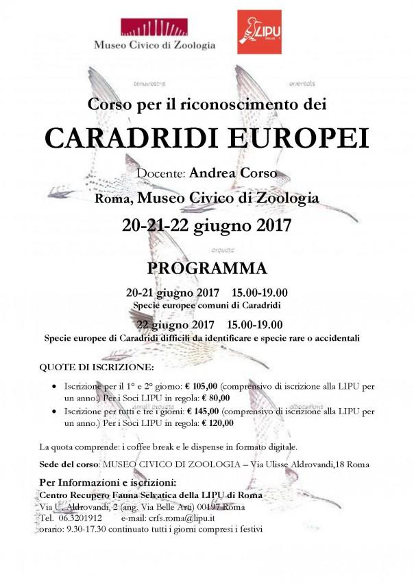 """Corso di ornitologia per il riconoscimento dei """"Caradridi europei"""""""