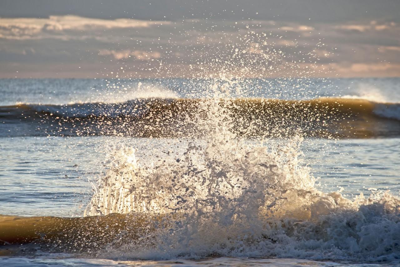 La Maremma toscana e le variazioni del livello marino a partire da due milioni e mezzo di anni fa