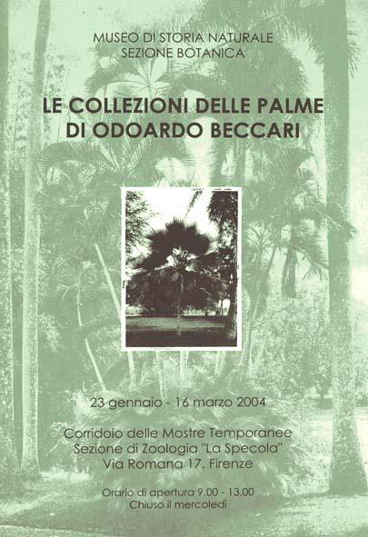 Le collezioni delle Palme di Odoardo Beccari