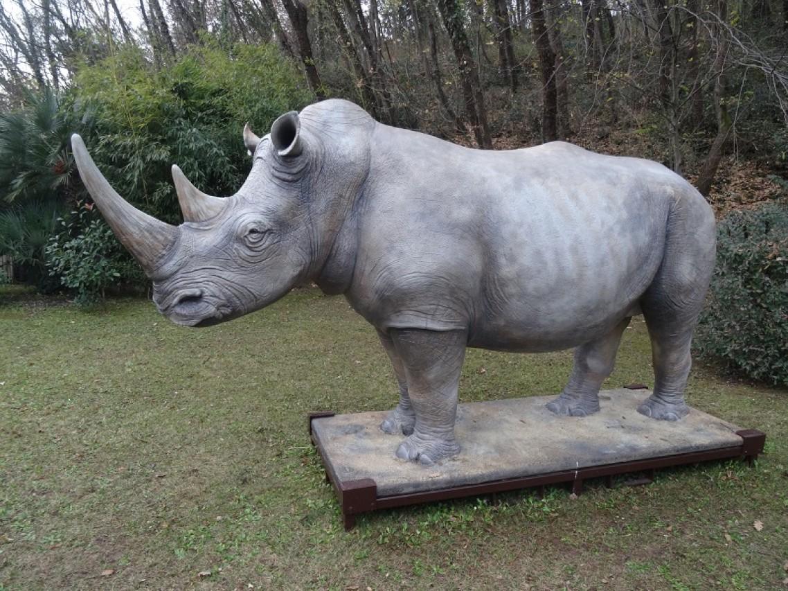 Colloqui zoologici: un rinoceronte a Torino? - Tavola rotonda per la conservazione della natura nell'ambito della mostra Estinzioni