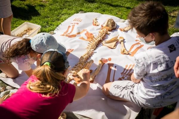 Alla scoperta dei nostri antenati preistorici! Al MUSE, il 19 giugno, Giornate europee dell'Archeologia