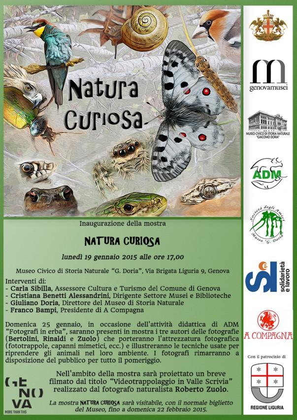 NATURA CURIOSA