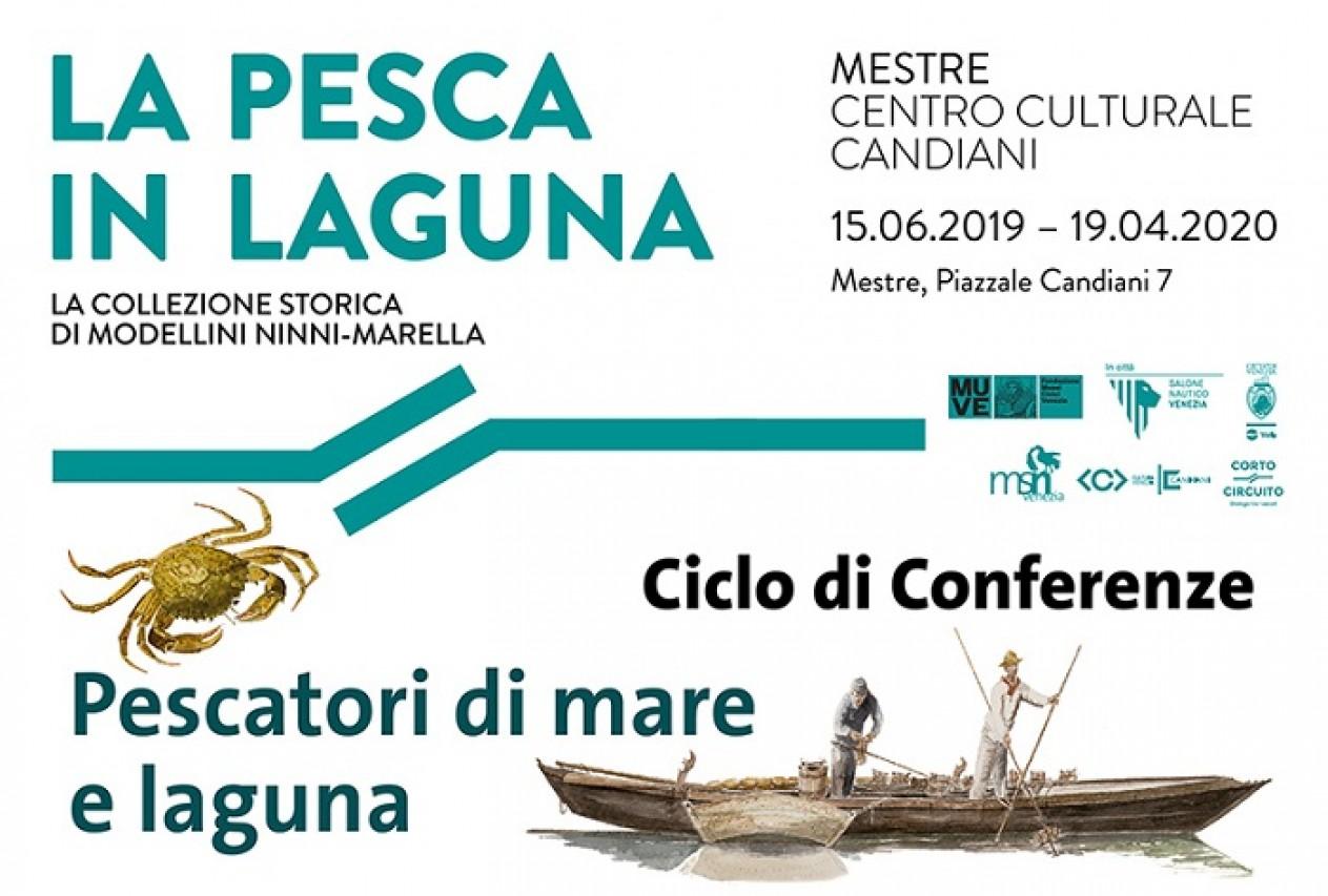 La fauna ittica della laguna di Venezia